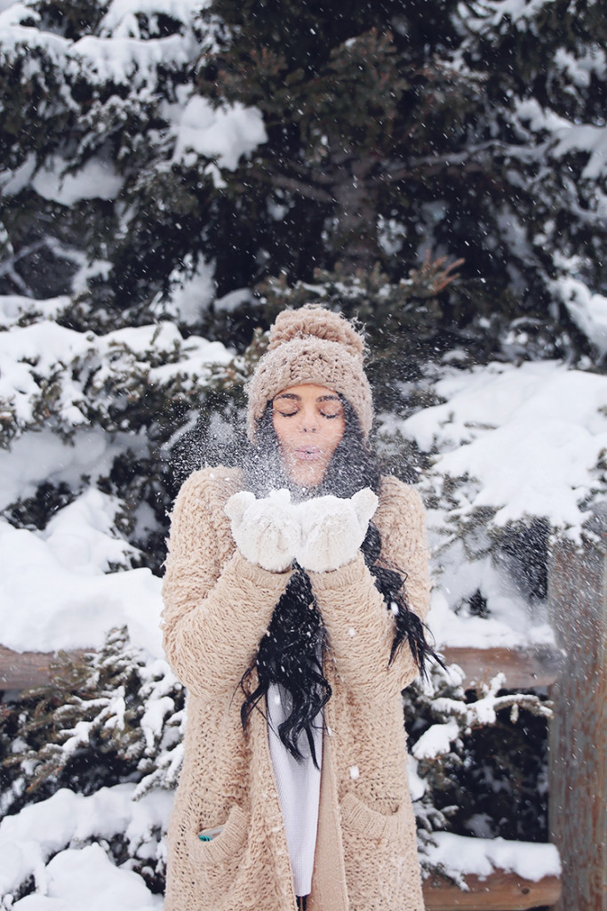 snow convey